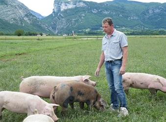 Emmanuel Micolod, éleveur de porcs